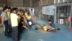 Hợp đồng đào tạo CTY TNHH Kỹ Thuật Điện Tự Động Hóa A&E